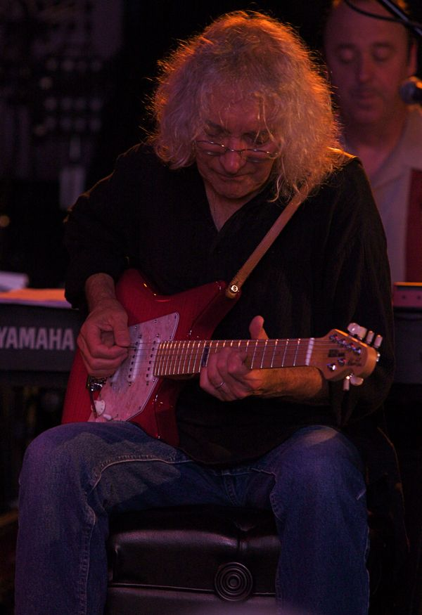 Albert Lee Guitar